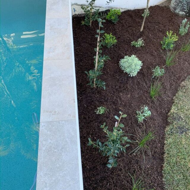 This Mediterranean inspired garden at our Noosa Waters project has transformed this waterfront property.